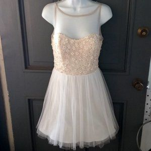 BB DAKOTA Floral Applique Mesh Skater Dress
